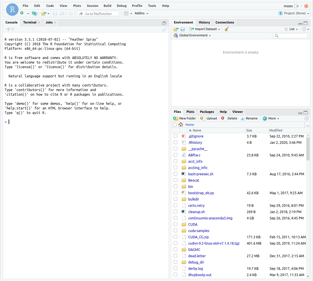 Screenshot showing RStudio through OpenOnDemand